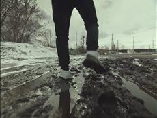 В России тает лёд - ГРИБЫ.